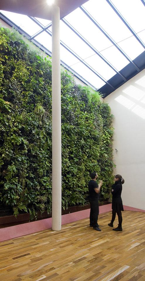 Diseño de jardines verticales en locales, fachadas verdes interiores, iluminación natural en ambientes, integración de naturaleza en interiores comerciales
